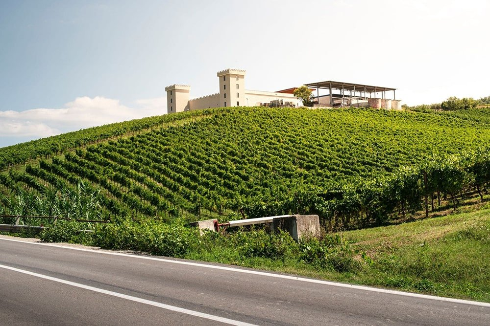 winery-on-hill